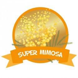 Super Mimosa